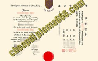 Chinese University of Hong Kong degree