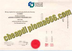 City University of Hong Kong degree