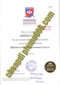 Dimensions International College degree