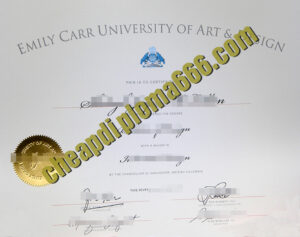 Emily Carr University of Art and Design diploma