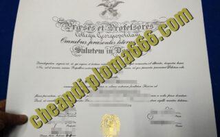 fake Georgetown University degree certificate
