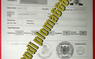 fake IELTS certificate