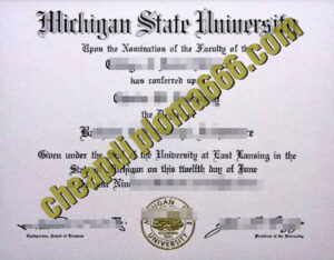 Michigan State University fake degree