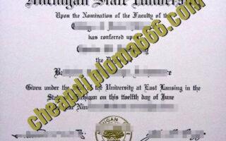 Michigan State University fake degree