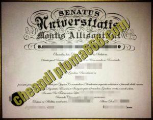 Mount Allison University fake degree