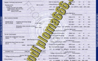 fake University of Colorado Boulder transcript