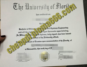 fake University of Florida degree certificate