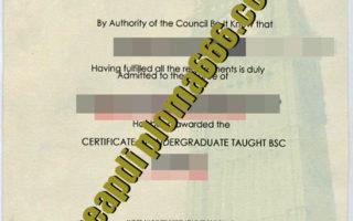 City University Business School London degree