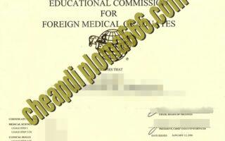 fale ECFMG certificate