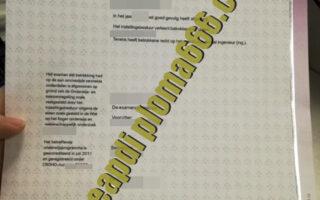 Fontys University degree certificate